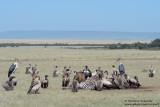 Crowd At The Zebra Kill