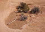 Arches NP Mini desert