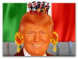 Taco Bowl Trump