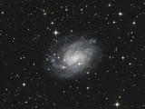 NGC300 - 4 hours