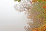 Autumnal colours, Mill Pond, Dorchester