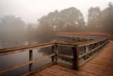 Boardwalk and mist, Dorchester