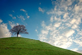 The swing, Burrow Hill