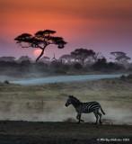 Tanzania and Kenya Images