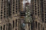 Tree of life, Nativity Facade