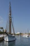 Barceloneta marina