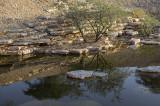 The wadi (5)