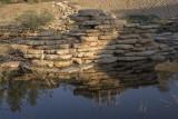 The wadi (6)
