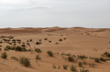 Umm Ruqaiba Desert