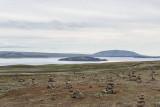 Þingvallavatn