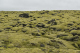 Velvety lava field