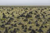 Laufskálavarða: field of cairns