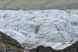 Svínafellsjökull, glacier expedition