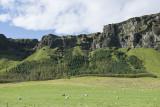 Volcanic scenery, drive to Reykjavík (4)
