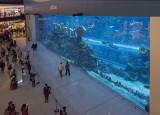 Aquarium, The Dubai Mall
