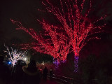 ZooLights at the National Zoo