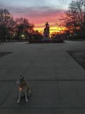 Sahraa and the sunrise in Lincoln Park