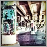 Highway As Art Gallery