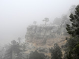 Snow flurries at the Grand Canyon