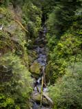 Lewis & Clark River Gorge