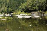 Nehalem River serenity