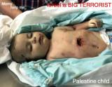 Israeli's Peace Offering