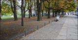 Small park by the Berliner Dom.....