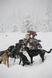 Winter Around Wenatchee