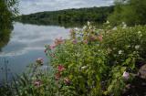 Lake Galena