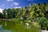 Buada Lagoon, Nauru's only inland open water
