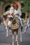 Jaipur horseman