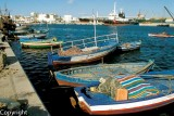 Fishing harbour, Sousse