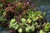 GardensbyBay-40.jpg