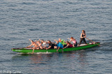 Dragon boat racers in training