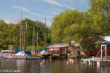 The local sailing club