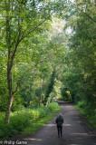 Entering the Heath (2)