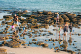 Rockpools at low tide