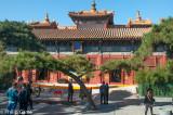 The 'Lama' Temple
