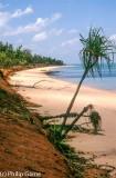 Putjamirra Beach