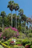 Centuries-old Royal Botanic Gardens at Peradeniya