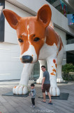Giant puppy at a new shopping mall
