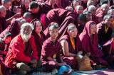 The Karmapa Lama's rapt audience
