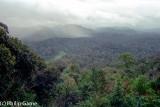 Looking west from Bukit Teresek