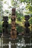 Kamoro totems at the Sheraton Timika