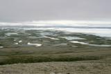 Mount Pelly
