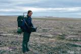 Flowering tundra - Bloeiende toendra