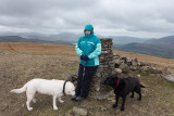 Lorraine and Dogs at summit of Clough Head