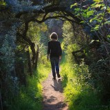 A walk in East Lothian