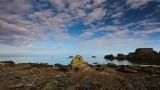 Dunbar Cliff Walk