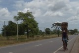Road south from Jaffna